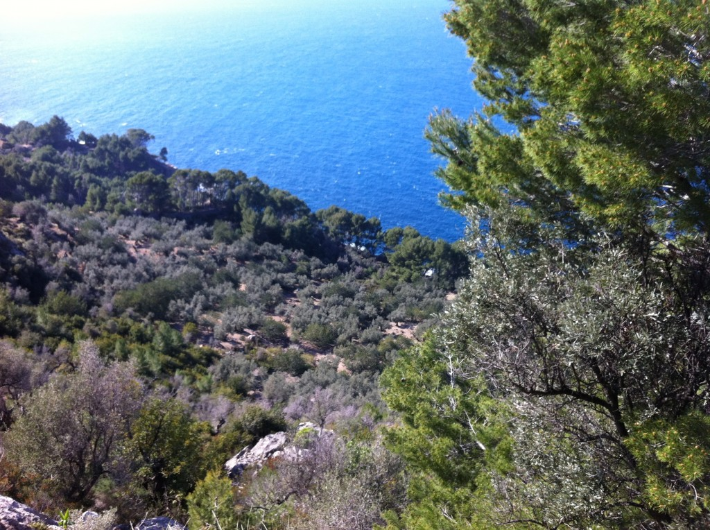 Blue sea, Mallorca