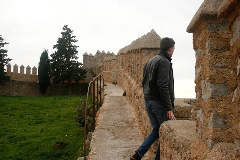 arta-andreas-borgen