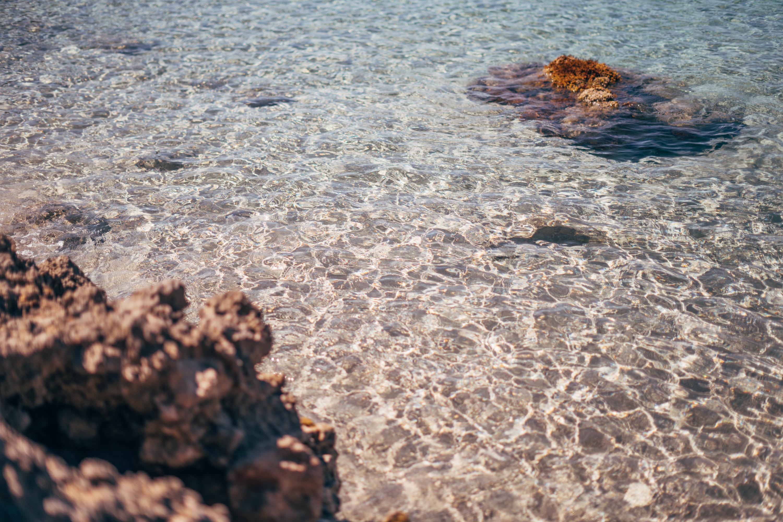 Ida Carr - Bröllopsfotograf på Mallorca